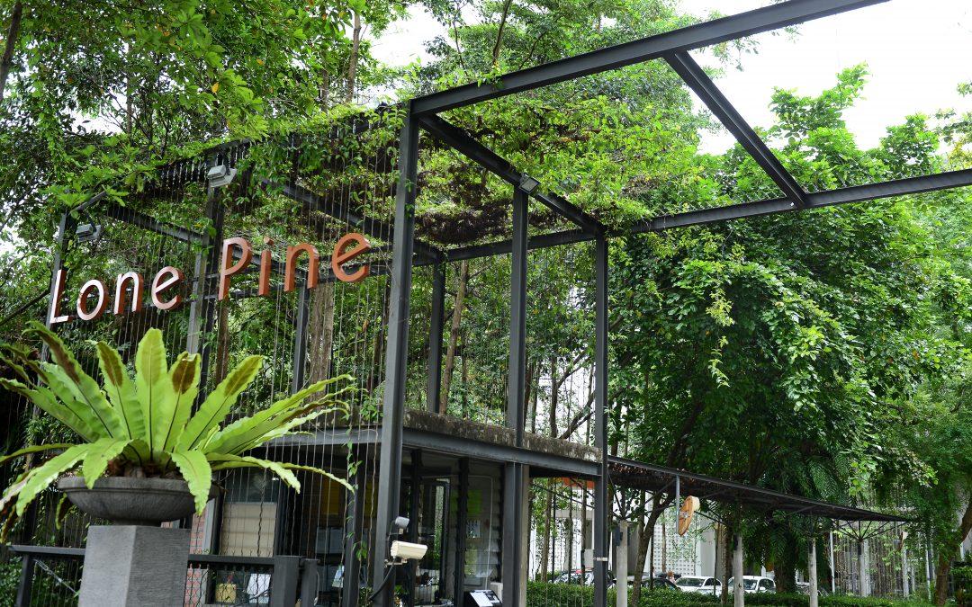 Hotel Butik Bertaraf Lima Bintang Menyajikan Pengalaman Eksklusif Di Pesisir Pantai Pulau Mutiara Sejak 1948