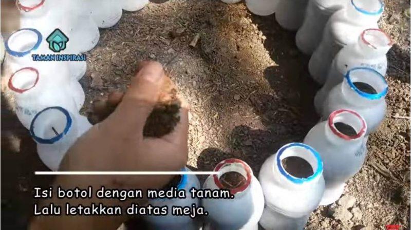 (VIDEO) DIY Bekas Tanaman Bertingkat Dari Botol Terpakai